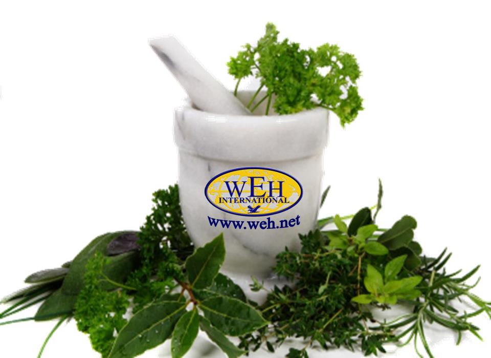 wonderful-herbs-logo.jpg